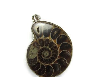 Ammonite Pendant, Fossil Pendant, Brown Shell Pendant, Ammonite Focal, Jewelry Supplies