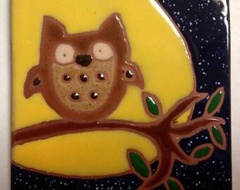 Owl sitting in the moonlight,6x6 trivet/tile