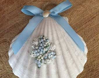 scallop shell decoration
