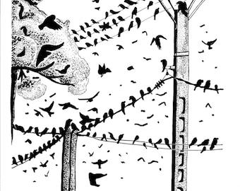 BIRDS ON LINE (animal black ink illustration, reproduction)