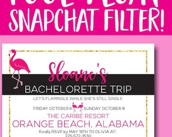 CUSTOM SNAPCHAT GEOFILTER, Bachelorette Snapchat Filter,Wedding Filter, Bachleorette Party, Last Flamingle, Snapchat Filter, Hens day, Final