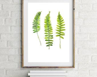 Watercolor Print of 3 Ferns, Botanical Art Print, Plant Print, Fern Leaf, Leaf Print, Boho Decor, Gallery Wall Prints, Watercolor Print Set