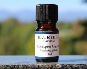 Organic Eucalyptus Globulus Essential Oil/100% Pure Essential Oil/ Essential Oil