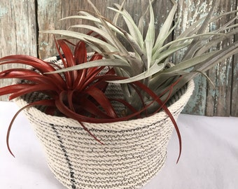 Coiled cotton sash cord basket. Beautiful, modern rustic design. Natural cotton cord stitched with black thread.