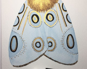 Original moth painting. Watercolour and gouache.