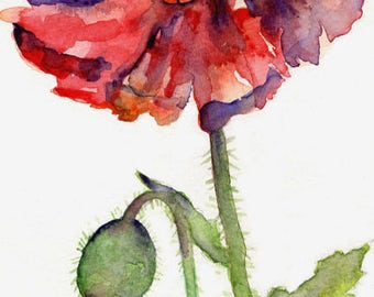 Watercolor Lone Poppy Original Painting, Red Poppies, Poppy Art, Poppy Decor