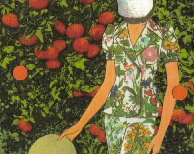 Toco Toucan Art, Exotic Bird Postcard, Florida Tangerines