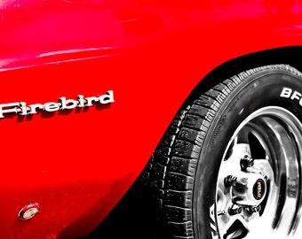 1969 Red Pontiac Firebird Trans Am Car Photography, Automotive, Auto Dealer, Muscle, Sports Car, Mechanic, Boys Room, Garage, Dealership Art