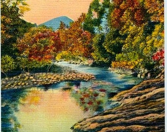 Vintage Postcard - Fall Reflections in a Mountain Stream (Unused)