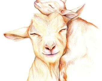 Motherhood, Wall Art Print, Goat Drawing, Goat Art, Goat Portrait, Nigerian Dwarf Goat, Print Sizes 8x10, 11x14