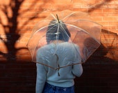 Free Shipping!: Vintage Clear Transparent Plastic and Peach Trim Rain Umbrella with Clear Lucite Handle