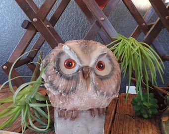 Owl Concrete Owl Vintage Owl Owl Book End Bird Vintage Owl Accent Home Decor