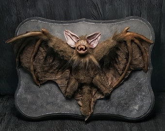 OOAK Handmade Creature of The Night Vampire Bat Wall Plaque Macabre Horror