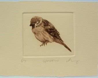 Bird print Drypoint. Hedge Sparrow. Hand printed brown ink on cream.
