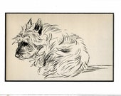 MATTED Dog Print, 1930s Terrier Lucy Dawson, 5x7 Mounted Print Puppy Print, black & white Wall Decor, Antique Decor, Interior Design, B-5