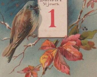 New Year 's Bird On A Snowy Branch Original Antique Postcard