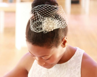Wedding hair jewel & birdcage veil, wedding hair clip, birdcage veil clip, bridal hair clip, wedding clip veil, wedding veil hair clip jewel
