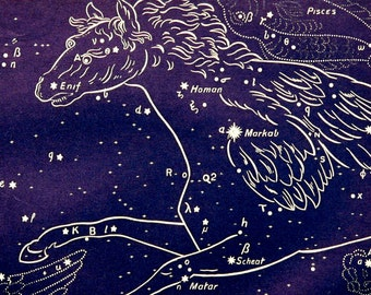 1911 Antique print of STARS. CONSTELLATIONS. PEGASUS. Astronomy print. Zodiacal Constellations. Zodiac. 116 years old celestial chart