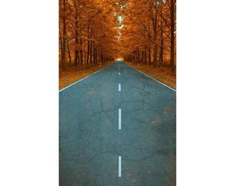 Autumn Road - Vinyl Photography  Backdrop Photo Prop