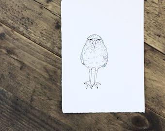 Original Ink Illustration of an Owl - Drawing - Gift - Birds