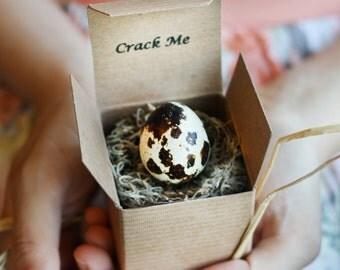 Crack Me! Pregnancy Announcement Quail Egg - Boy Girl - Gender Reveal - Baby Shower Invitation - Custom Unique Thanksgiving Christmas Winter