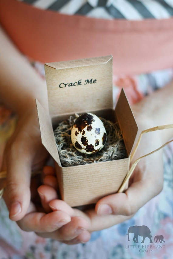 Crack Me! Pregnancy Announcement Quail Egg - Father's Day - Dad - Boy Girl - Gender Reveal - Baby Shower Invitation - Custom Unique Summer