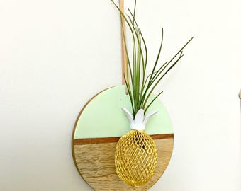 Circle wood wall hanging with pineapple and air plant   / Tillandsia air plant/ wall decor-  mint and wood air plant display