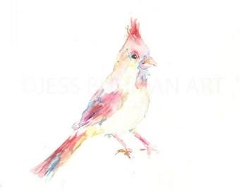"""ON SALE Original Bird Watercolor Painting, Titled: """"Cara the Cradinal"""" by Jessica Buhman 11 x 14, Bird Painting, Bird Watercolor, Cardinal P"""