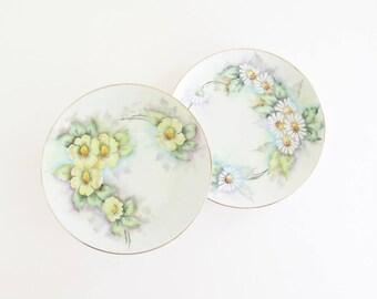 Bavarian Floral Decorative Dessert Plate Set of 2 ALKA KUNST Alboth and Kasier