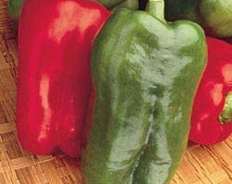 VPPS) BIG BERTHA Pepper~Seeds!!~~~~~~~This is a Whopper!!!