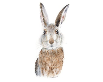 Woodland Nursery Art, Baby Rabbit Watercolor, Bunny Print, Baby Animal Art, Nutbrown Hare, Snowshoe Hare, Brown, Gray, Wildlife Art