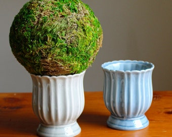 Moss Topiary in Green Ceramic Container
