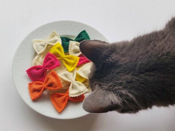 jouet chat bio