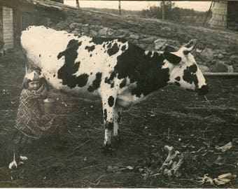 Unique, fantastic photo of little village girl milking a cow back in 1935 huge dog watching her. Lovely old snapshot childhood vintage RPPC
