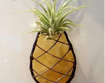 Pineapple Air Plant Holder