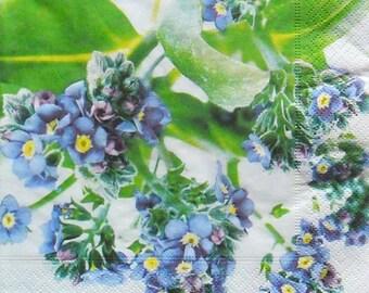 Set of 2 pcs 3-ply ''Myosotis Discolor'' paper napkins for Decoupage or collectibles 33x33cm, Floral napkins, Servetten, Tovaglioli
