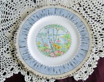 Royal Albert SILVER BIRCH Bone China Bread Plate - Made in England