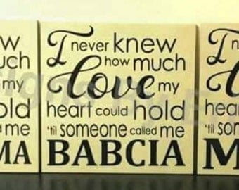 I Never Knew How Much.... wooden wall decor