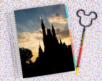 Disney World Erin Condren Life Planner Cover INSTANT DOWNLOAD - Cinderella Castle 12