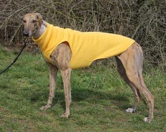 Greyhound clothing, greyhound sweater, greyhound coat, yellow