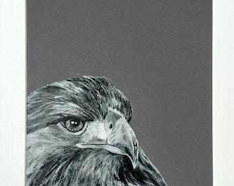 Eagle Portrait, Original Art