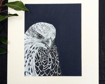 Falcon, Original Ink Portrait