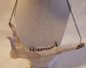 Bone 86- Deer Jaw Bone with Spikes Necklace Witch Goth Punk Oddity Bohemian Jewelry