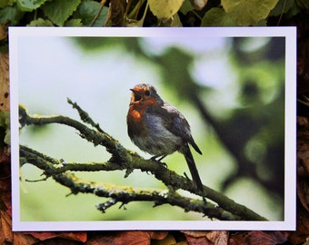 Belting It Out. (Greeting Card)