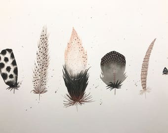 Original Watercolor Feathers - Peach and Black