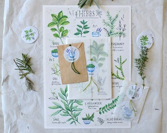 Garden Herbs SET - Print (A4), Card Set, Sticker Set