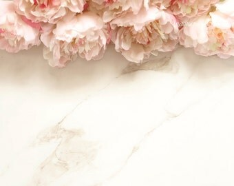 Styled stock photography/floral/peonies/pink/vintage/frame/border/JPEG/Mock up/styled background/Digital image/flowers/marble/feminine style