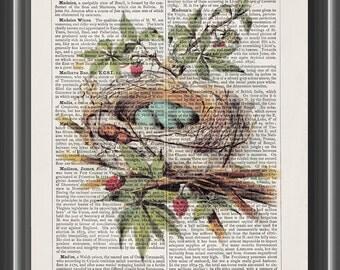 Catbird bird's bird egg nest vintage dictionary blue eggs ornithology art print home decor wall art