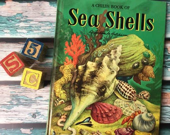 A Childs Book of Sea Shells Maxton Books For Young People