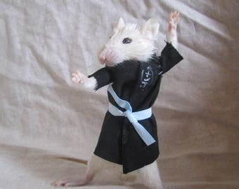rat taxidermy taxidermy kimono rat cabinet of curiosity odditties
